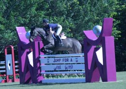 palm beach2004-saut violet