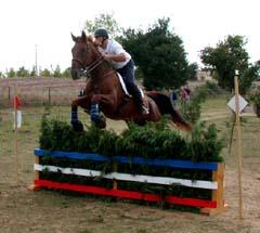 trec2002-gracient-saut largeL