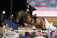 WEF2011- Nick Skelton- big star  mediumL