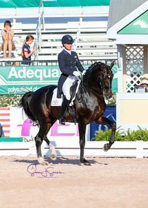 Adrienne Lyle et Salvino CDIO 3* Wellington 2018 largeP