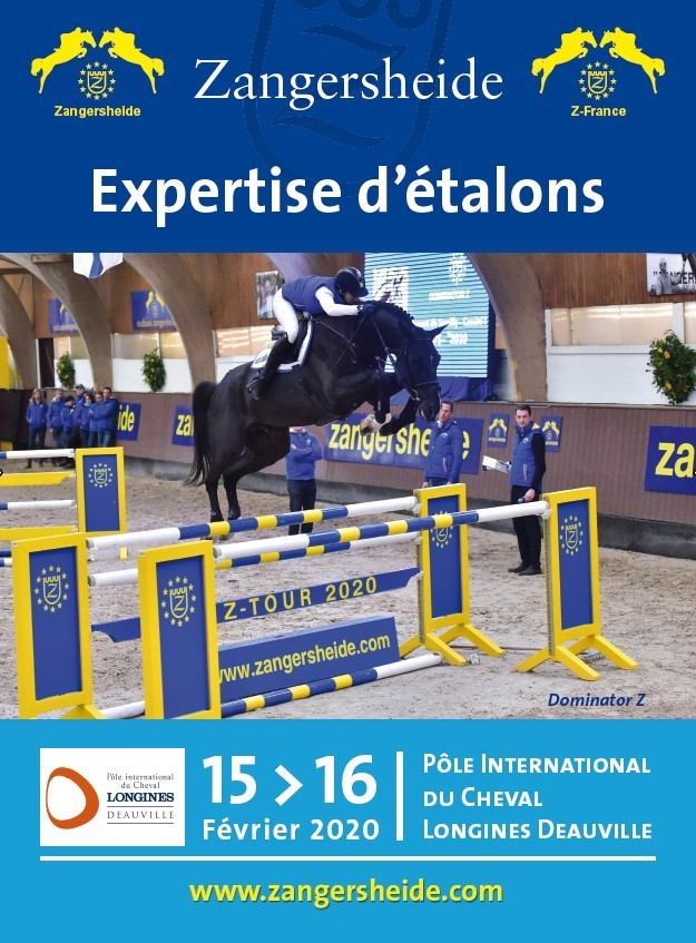 Affiche Expertise Z Deauville 2020