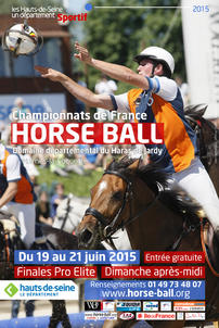 affiche horse ball jardy largeP