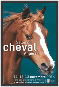 affiche salon du cheval d'angers largeP