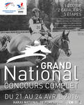 CCE Grand National Pompadour mediumP