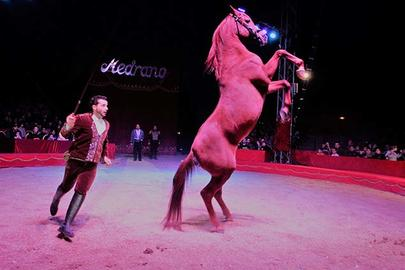 cirque medrano Jessy Cagniac et ses chevaux largeL