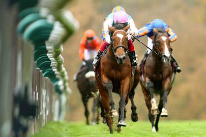 Enable Arc de Triomphe 2017 largeL