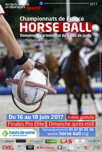 jardy 2017 horse ball affiche largeP