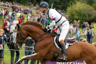 jem 2014 William Fox Pitt et Chilli Morning mediumL