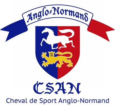 logo anglo normand largeL