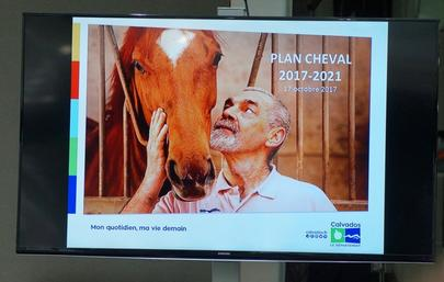 Plan cheval largeL