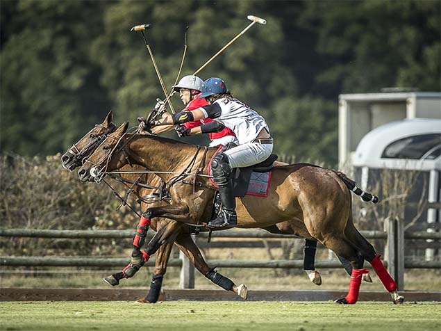 polo chantilly