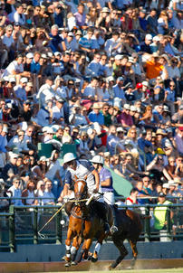 polo parlermo 2014 spectateurs largeP