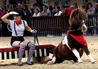 Poney club Cenves Equita mediumL