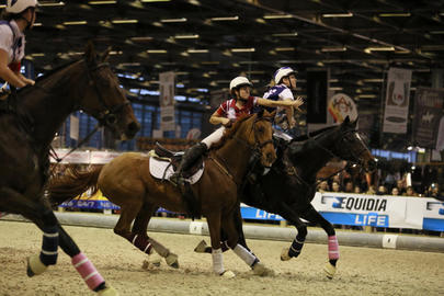 salon 2014 horse ball chambly montpellier largeL