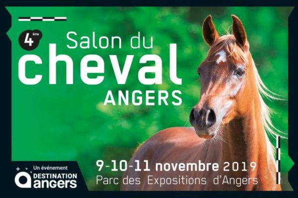 Salon du cheval d'Angers 2019