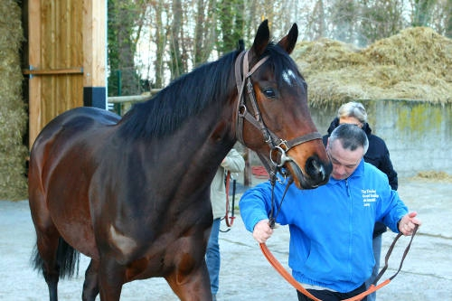 treve retour chantilly