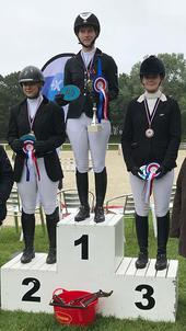 universitaire dressage largeP